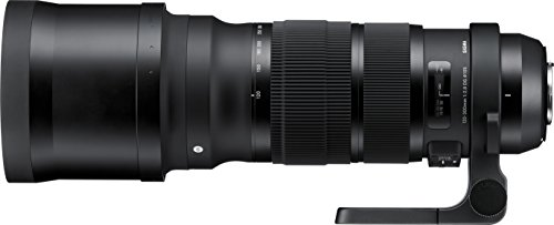 Sigma 120-300mm F2.8 Sports DG APO OS HSM Lens for Nikon