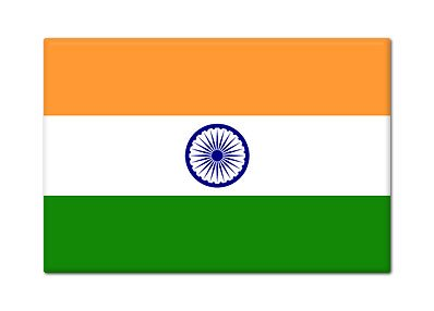 Flag of India Fridge Magnet
