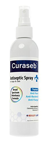 Curaseb | Chlorhexidine Spray for Dogs & Cats - Anti Itch, Antifungal & Antibacterial w/ Aloe - Effective Against Ringworm, Yeast & Pyoderma, Broad Spectrum Vet Formula, 100% Satisfaction Guarantee