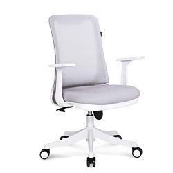 Hourseat Ergonomic Office Chair with Adjustable Height Breathable Mesh Executive Desk Chair with 3D Thickened Cushion 360° Rolling Swivel Chair for Home, Office, Study, Meeting