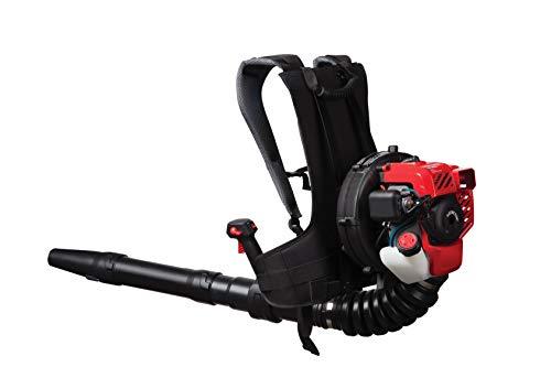Craftsman BP210 27cc, 2-Cycle Full-Crank Engine Backpack Gas Powered Leaf Blower