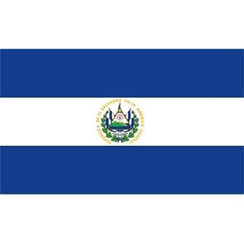 Image result for el salvador flag
