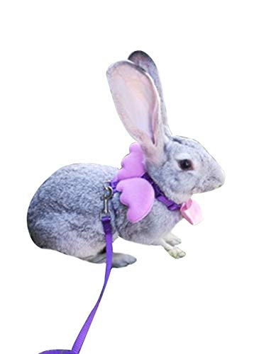 FunPetLife Adjustable Rabbit Harness and Leash Set-Angel Wing 1