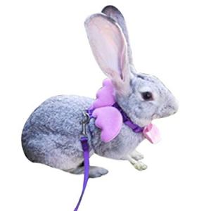 FunPetLife Adjustable Rabbit Harness and Leash Set-Angel Wing