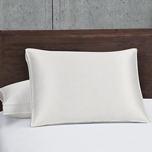 Royal Hotel Abripedic Silk Goose Down Pillow - 450 Thread Count Cotton-Silk-Blend Shell, Standard/Queen Size, Soft, 1 Single Pillow