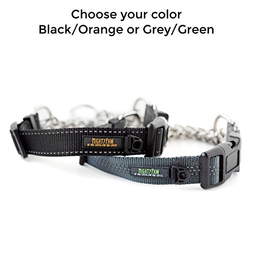 Mighty Paw Martingale Collar, Training Dog Collar, Limited Cinch Chain Pet Gear for No Pull Leash Walking 2