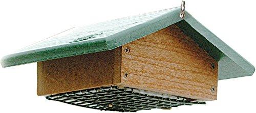 Audubon-Going-Green-Suet-Bottom-Feed-Style-Feeder-Model-NAGGSBF