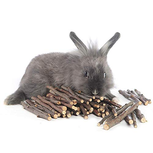 250g and 500g Natural Apple Sticks Small Animals Molar Wood Treats Toys Chinchilla Guinea Pig Hamster Rabbit Gerbil Parrot Bunny and Small Animals Chew Stick Toys Treats 1