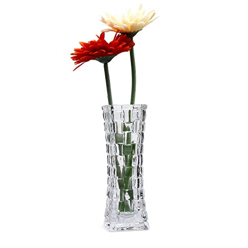 Rachel's Choice Clear Glass Vase Transparent 7' Tall Glass Rattan Square, Unique Flower Bottle Decorative Floral Vase Modern Design Flower Planter for Home Office Living Cantine Decoration
