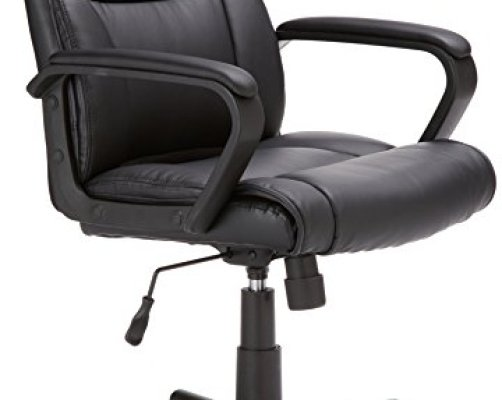 Top 10 Best Ergonomic Desk Chairs With Wheels - Top Reviews   No ...
