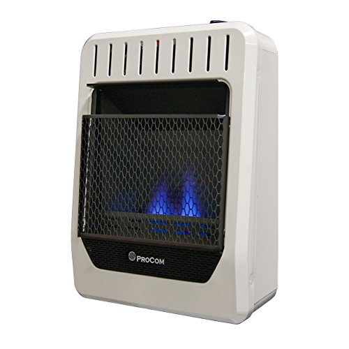 ProCom MG10HBF Ventless Dual Fuel Blue Flame Wall Heater, 10,000 BTU