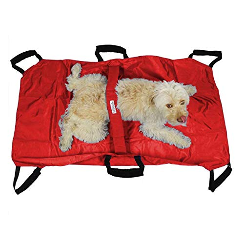 Walkin' Transport Stretcher for Dogs and Other Animals with Safety Strap to Keep Your Pet Secure