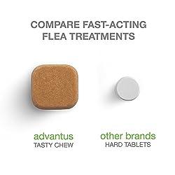 Advantus Soft Chew Flea and Tick Treatment 1