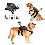 Hound Dog Fetch Harness Chest Strap Belt Mount, iKNOWTECH GoPro Dog Mount Harness Adjustable Chest Strap Mount Belt Fetch for GoPro Hero 6/5/5 Session/4 Session/4/3+/3/2/1, Yi Action Cameras