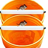 RinneTraps Log Mouse Trap | 2pk | Multi Catch - No Drilling - Simple and Ready for Use (2)