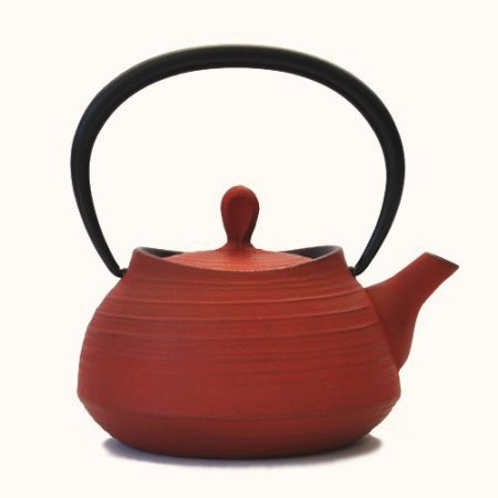 Southern iron teapot brush marks Hakeme 0.4L Red (japan import)
