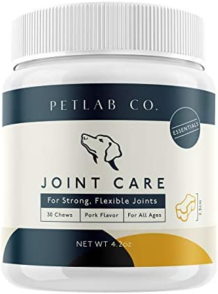 417GEmnfHuL. AC  - Petlab Co. Joint Care Chews for Dogs | Arthritis Soft Chew Dog Hip and Joint Chewable Supplement Vitamins | MSM, Glucosamine, Fish Oil Omega-3 Fatty Acids, Calcium Fluoroborate, Turmeric