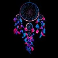 """Caught Dreams Dream Catcher Traditional Indian Wall Art 