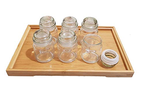 419C G5 SqL - DINEMART Glass Dry Fruit and Honey Glass Spice Jar Container for Storage with Air Tight Lid Glass Cap (100ml, Clear) Set of 6 Pieces