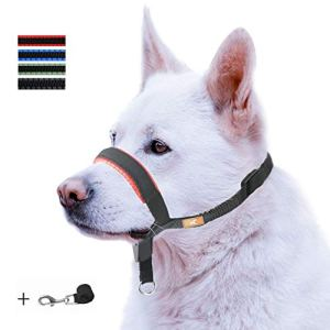 Dog Head Collar with Padded Leather, Head Harness Stops Dog Pulling, Head Leash (L, Red)