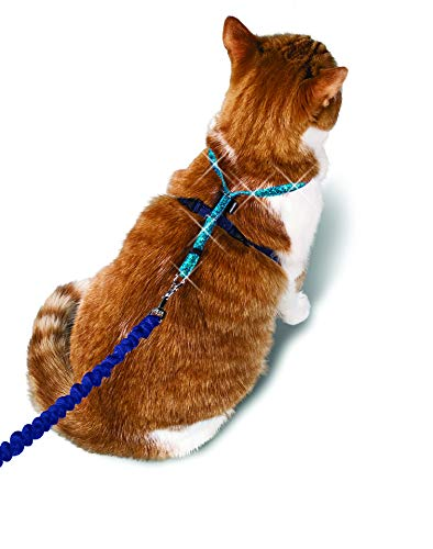 PetSafe Come With Me Kitty Glitter Harness and Bungee Cat Leash 1