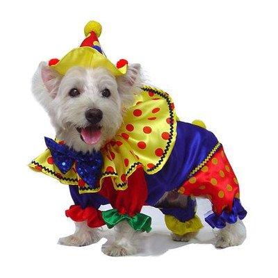 "Shiny Clown Dog Costume Size: 4 - (12.5"" L) 1"