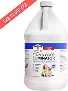 best carpet cleaner solution for cat urine - Stuart Pet Supply Co.