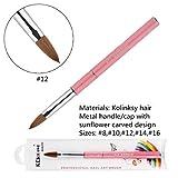 KEMEISI Kolinksy Nail Brush Sunflower Pink Handle Sable Acrylic Brush Factory Direct Crimped Size 8,10,12,14,16 (#12)