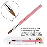 KEMEISI Kolinksy Nail Brush Sunflower Pink Handle Sable Acrylic Brush Factory Direct Crimped Size 8,10,12,14,16 (#12)