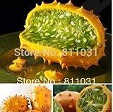 Hot selling 5pcs kiwano melon seeds, Cucumis Metuliferus, African cucumber vegetable seeds DIY home garden