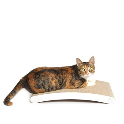 4CLAWS Curve Scratching Pad (White) – Basics Collection Cat Scratcher
