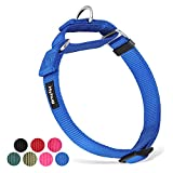 Hyhug Unable to Slip Out of Martingale Collar for Medium Breeds Dogs - Professional Training and Daily Use Walking.(Medium,Bright Blue