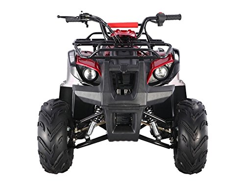 TAO TAO Brand UTILITY Model # ATA-125D - 110cc engine with REVERSE