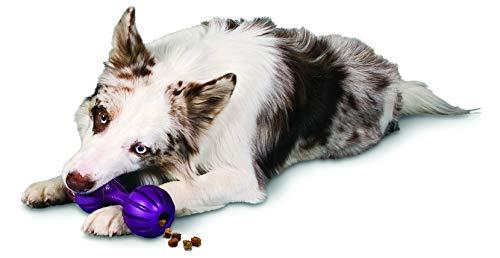 PetSafe Busy Buddy Waggle Dog Toy 1