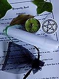 Money wealth prosperity abundance magic spell candle witchcraft kit