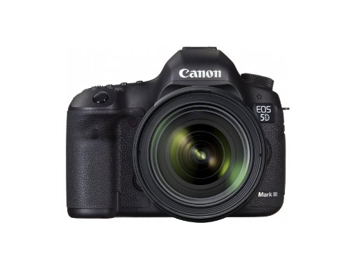 Canon EOS 5D Mark III with EF 24-70mm f/4 L IS Kit