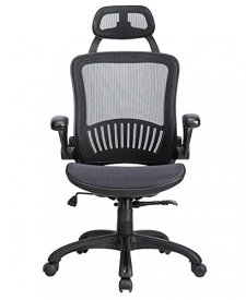 Computer Desk Office Chair, Ergonomic Executive Mesh Task Chair Lumbar Support for Office Chair with Flip-up Arms