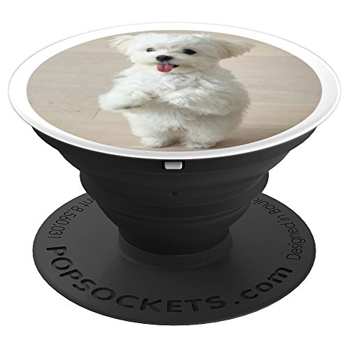 Cute Maltese Puppy PopSockets Grip Stand for Phones Tablets - PopSockets Grip and Stand for Phones and Tablets