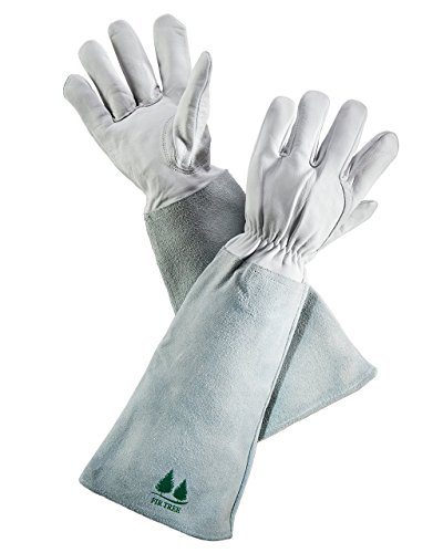 Leather Gardening Gloves by Fir Tree. Premium Goatskin Gloves With Cowhide Suede Gauntlet Sleeves. Perfect Rose Garden Gloves. Men's and Women's Sizes. M-8 (See Size Chart Photo)