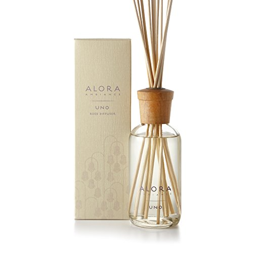 41OvOnCO%2BhL The ALORA AMBIANCE products are produced by the sister team of Annie and Therese Gibbons. They were inspired by their 15 years spent living and laughing in the picturesque mountain region of Lake Como, Italy. As effective a centerpiece as it is an air freshener, the Alora Ambiance diffuser truly is a one-of-a-kind product and makes a perfect gift.