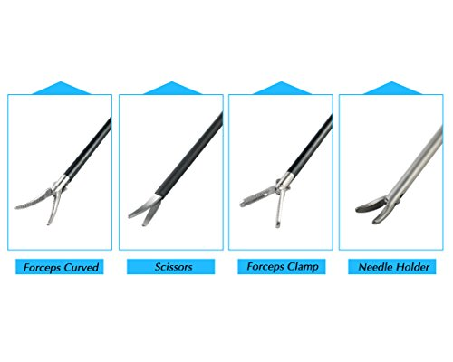 Curved Forceps for College students Coaching 41PYdUAKprL