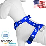 Pacific Husky Dog Harness - 1' Adjustable No Pull H-Harness - Chest (19.5-33.4) in - (Blue)