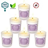 Aromama Pack of 6 Citronella Candles Indoor and Outdoor Scented Natural Soy Wax Glass Candle Gift Set