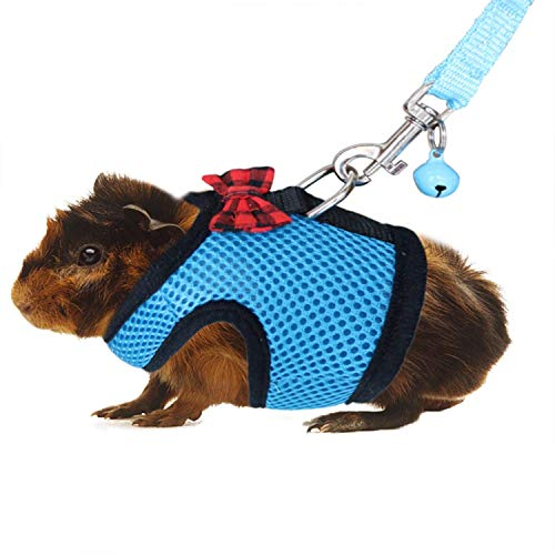RYPET Guinea Pig Harness and Leash - Soft Mesh Small Pet Harness with Safe Bell, No Pull Comfort Padded Vest for Guinea Pig, Hamster, Rats and Similar Small Animals 1
