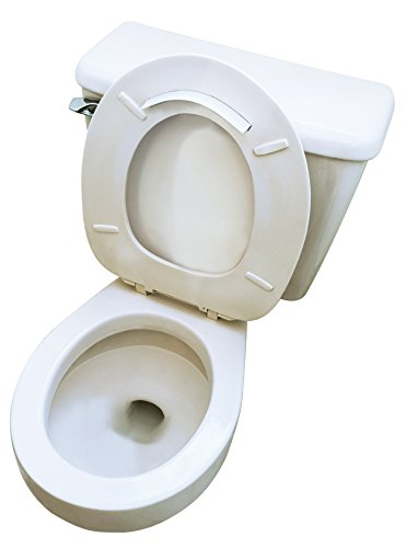 how to get rid of brown stains in toilet bowl