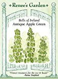 Bells of Ireland, Antique Apple Green