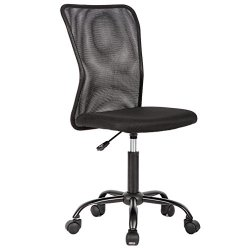 Office Chair Cheap Desk Chair Mesh Computer Chair with Lumbar Support No Arms Swivel Rolling Executive Chair for Back…