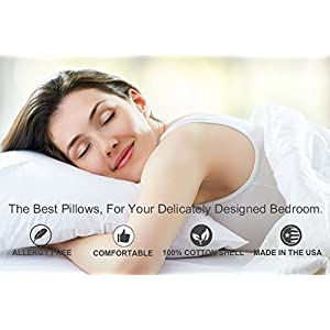 Siberian 800 Fill Power White Goose Down Pillow.