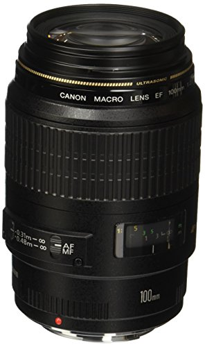 Canon-EF-100mm-f28-Macro-USM-Fixed-Lens-for-Canon-SLR-Cameras