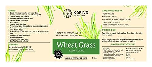 Kapiva Wheat Grass Juice - 1 L - Ayurvedic Superfood 7